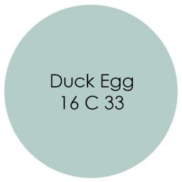 Duck Egg.jpg