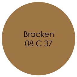 Bracken emulsion.jpg