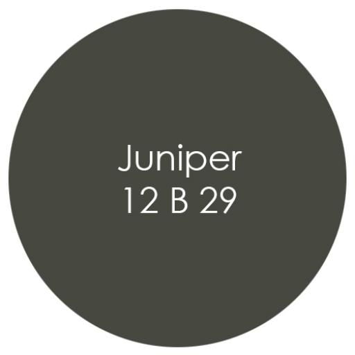 Juniper.jpg