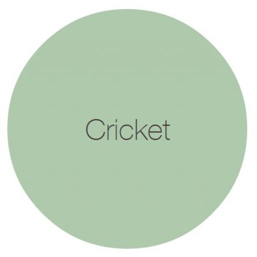 Earthborn Claypaint - Cricket
