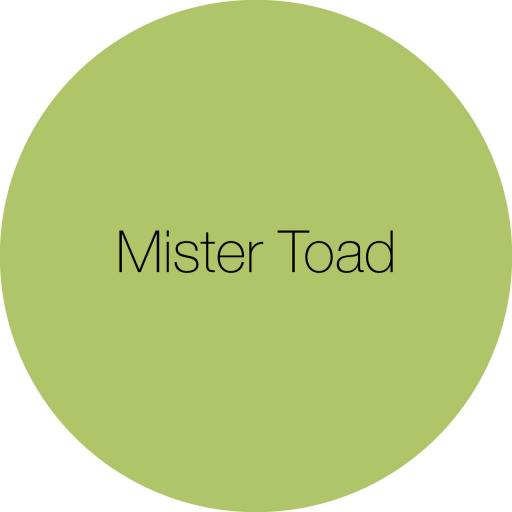 Earthborn Claypaint - Mister Toad