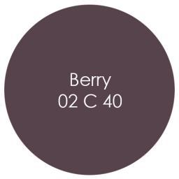 Earthborn Eco Pro Matt Emulsion - Berry