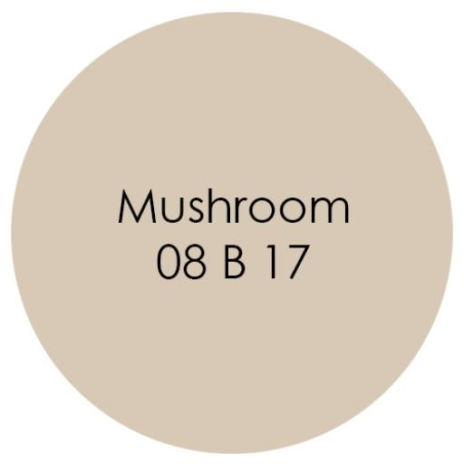 Earthborn Eco Pro Matt Emulsion - Mushroom