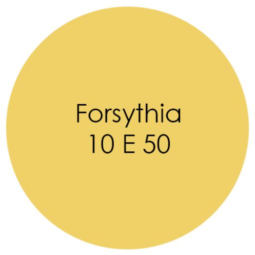 Earthborn Eco Pro Matt Emulsion - Forsythia