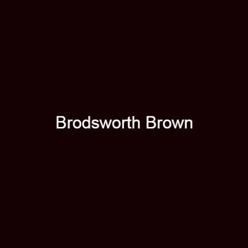 Brouns & Co Linseed Paint - Brodsworth Brown