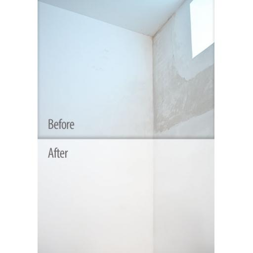 Before and After Ambient Primer.jpg